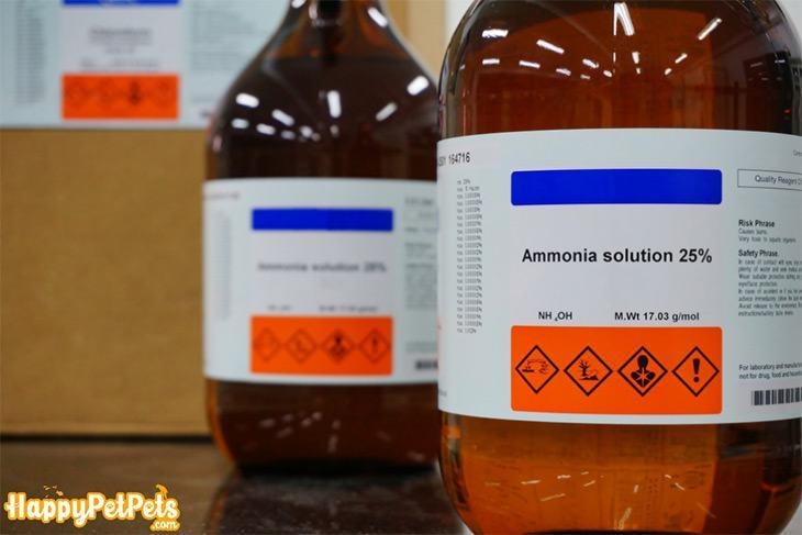 Ammonia-solution-is-a-temporary-way-to-control-the-ammonia-level-in-the-fish-tank