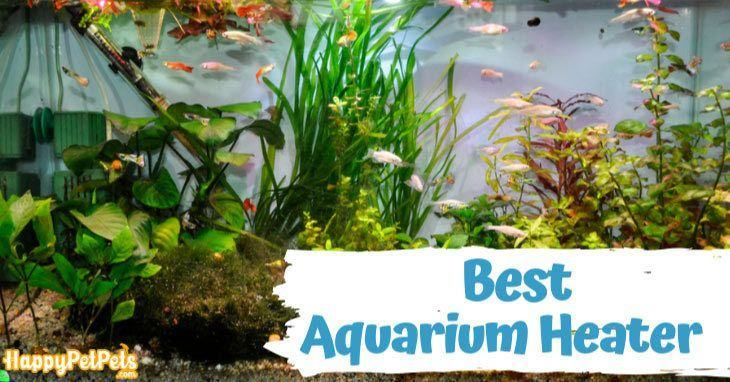 Best-Aquarium-Heaters