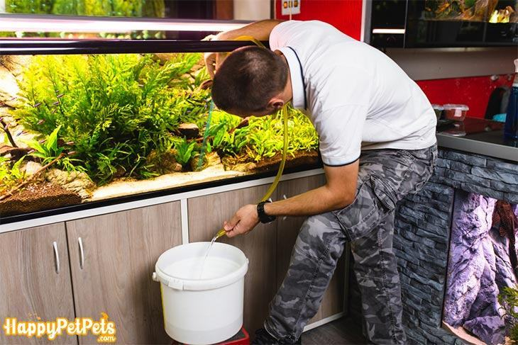 Using-a-siphon-tube-to-make-a-partial-water-change