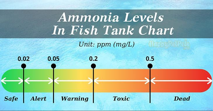 ammonia-levels-in-fish-tank-chart