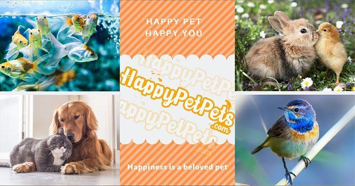 happypetpets-about-us-image