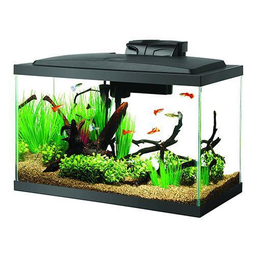 Aqueon-10-Gal-LED-Aquarium-Kit