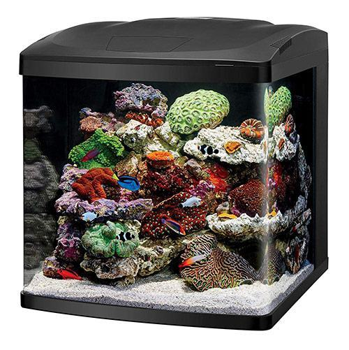 Coralife-LED-Biocube-Aquarium-LED