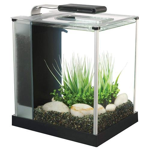 Fluval-Spec-III-Aquarium-Kit,-2.6-Gallon