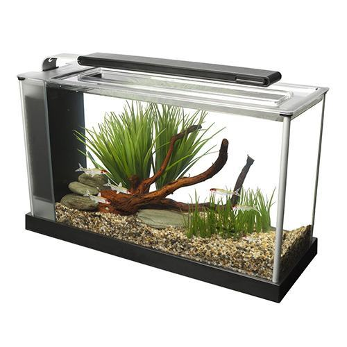 Fluval-Spec-V-Aquarium-Kit,-5-Gallon,-Black
