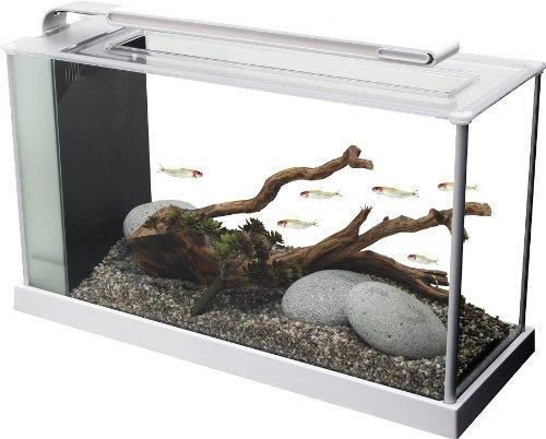 Fluval Spec V Aquarium Kit, 5-Gallon