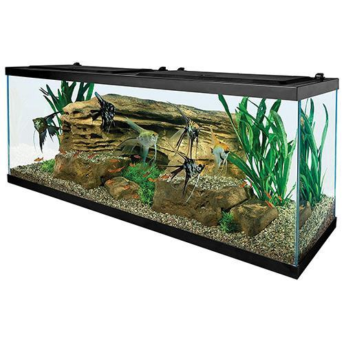 Tetra-55-Gallon-Aquarium-Kit-with-Fish-Tank,-Fish-Net,-Fish-Food,-Filter,-Heater-and-Water-Conditioners