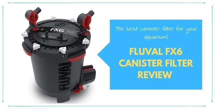 Fluval-FX6-Canister-Filter-Review