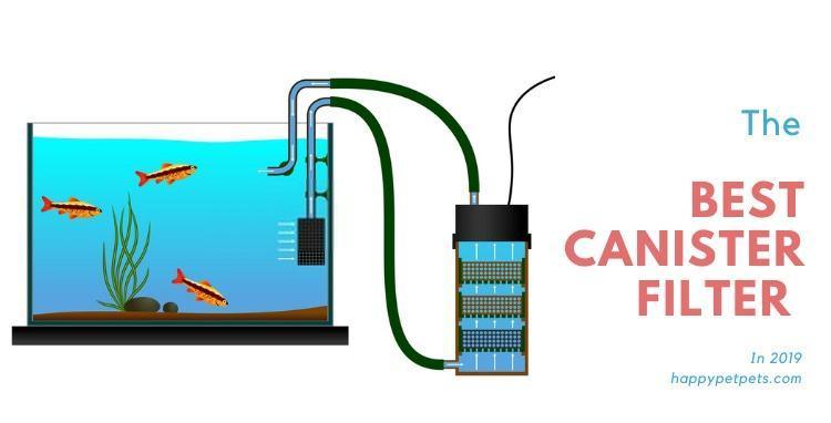 best-canister-filter