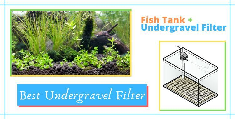 best undergravel filter