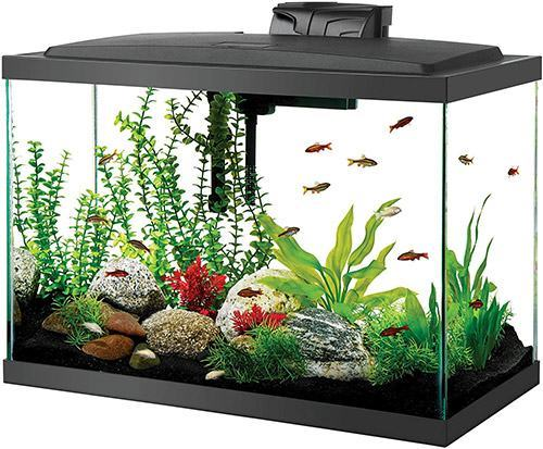 Aqueon Led Aquarium Kit 20h Black 20 Gallon