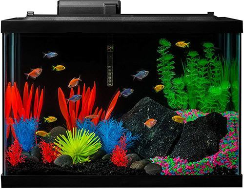 GloFish Aquarium Kit Fish Tank with LED Lighting and Filtration Included 20-Gallon