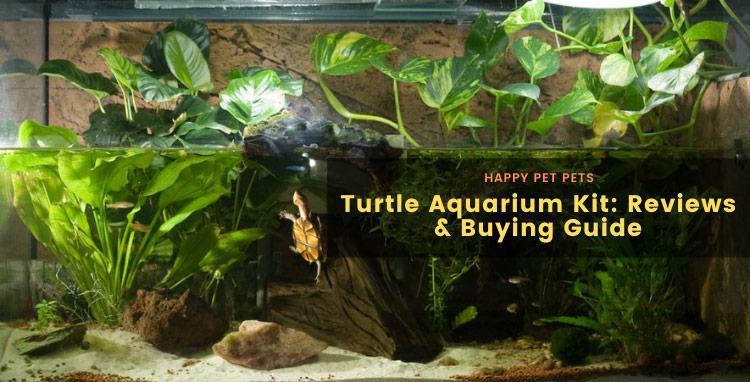 best turtle aquarium kits