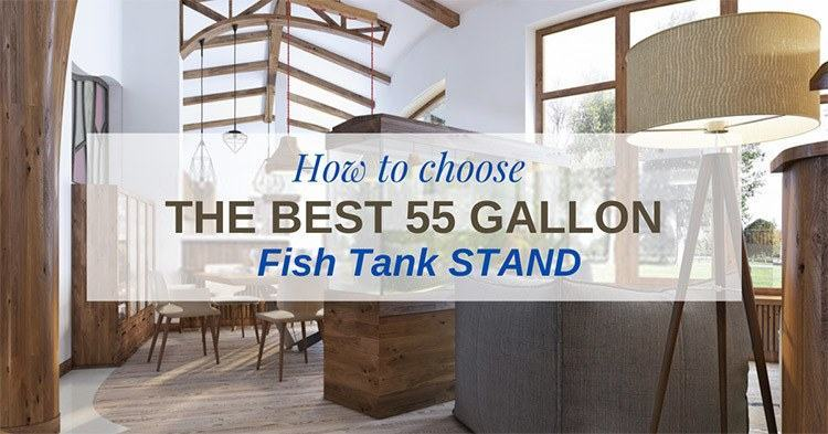 Best-55-gallon-fish-tank-stand