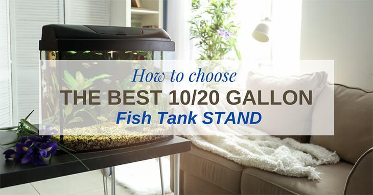 best-10-20-gallon-fish-tank-stand