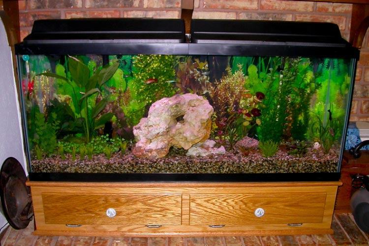 best-aquarium-stand-low-fish-tank-stand