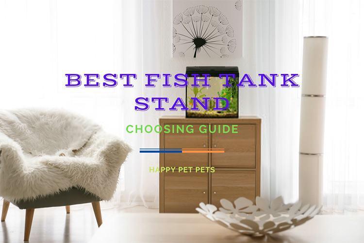 best fish tank stand