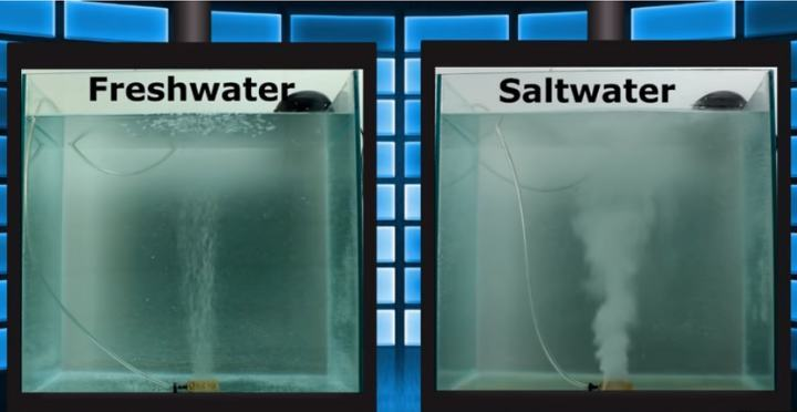 Protein skimmer for saltwater tank will be more useful