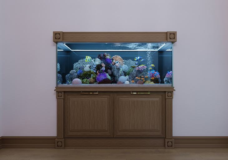 best-aquarium-stand-protect-tank