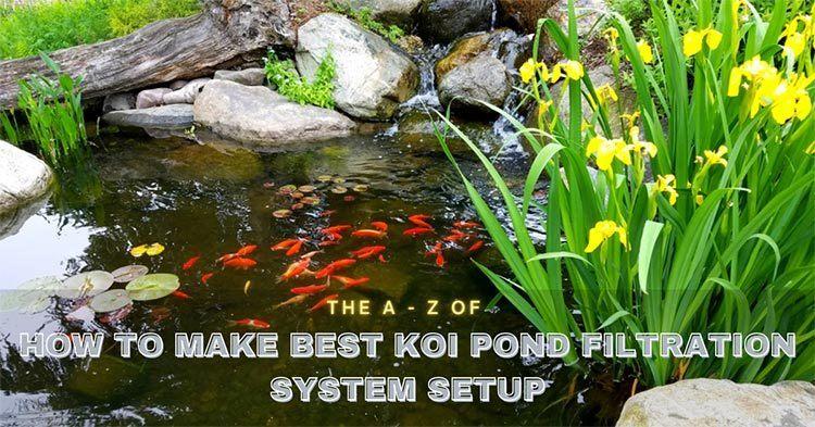 Best-Koi-Pond-Filtration-System-Setup