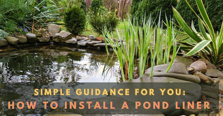 How-to-install-a-pond-liner