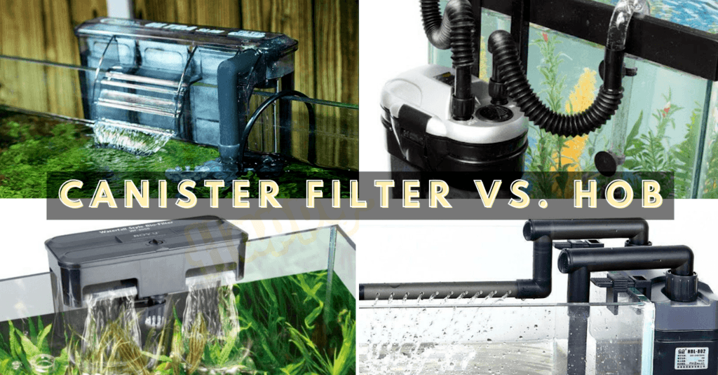 canister filter vs hob